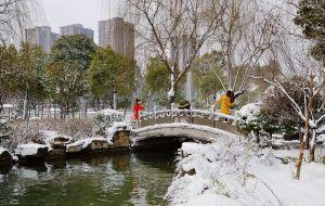 【枣庄图片】试镜新城雪景