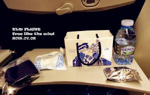 【罗马尼亚图片】#消夏计划#●〈罗马尼亚〉荷兰皇家航空体验飞机上的餐点佐欧洲大陆美景
