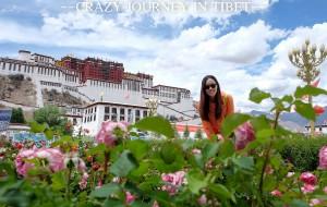 【邦达图片】[放肆的毕业旅行Ⅰ]川藏,川藏,体验不一样的旅行。。