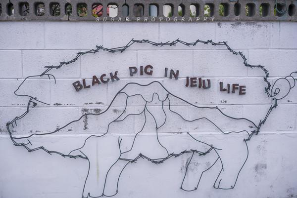 好萌萌哒的小猪爬在栅栏上.