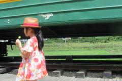 舟山一夏--糯米团一家向日葵花畔的艺术长廊,黄金沙滩旁的绚烂时光