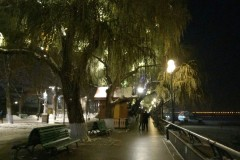 哈尔滨冬夜