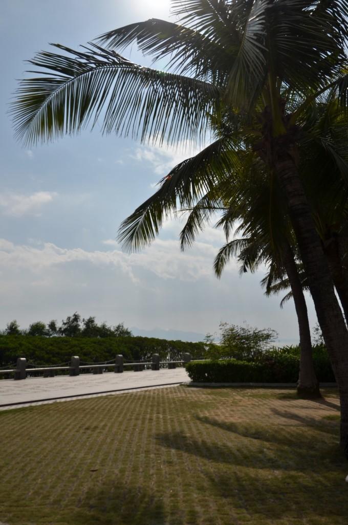 深圳市红树林海滨生态公园坐落在滨海大道西海岸边
