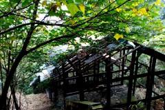 荒废的公园-----重庆涂山雕塑公园