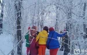 【伊春图片】穿越林海雪原寻觅雾凇奇观