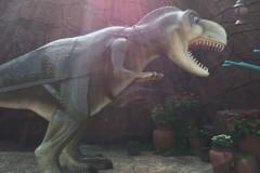 从开园玩到闭园的恐龙园过瘾一日游