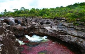 【哥伦比亚图片】Colombia的魔幻现实主义,彩虹河Cañon Cristales