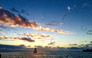 【基韦斯特图片】花之屿——佛罗里达