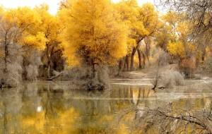 【库车图片】远方,如诗如画的南疆--2015秋库尔勒、轮台、喀什、帕米尔高原、阿克苏、库车、吐鲁番15天环游