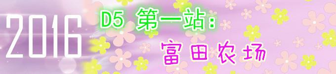 D5 第一站:富良野 ——富田农场