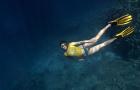 泰国芭提雅旅游 芭堤雅潜水 随同浮潜出海一日游 体验无证深潜