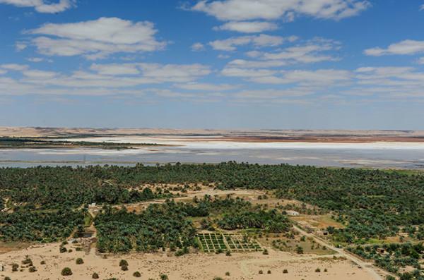 锡瓦绿洲,在这里爱上撒哈拉