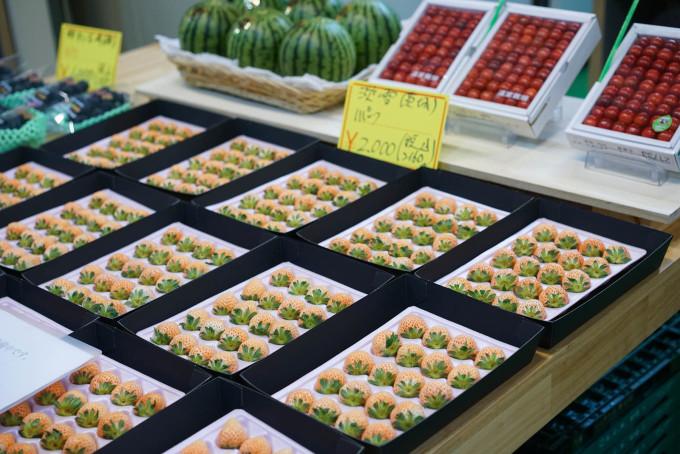 東京·美食物語 84