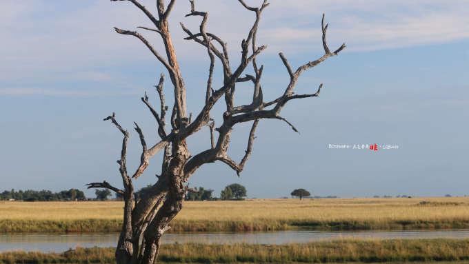 贊比亞自助遊攻略