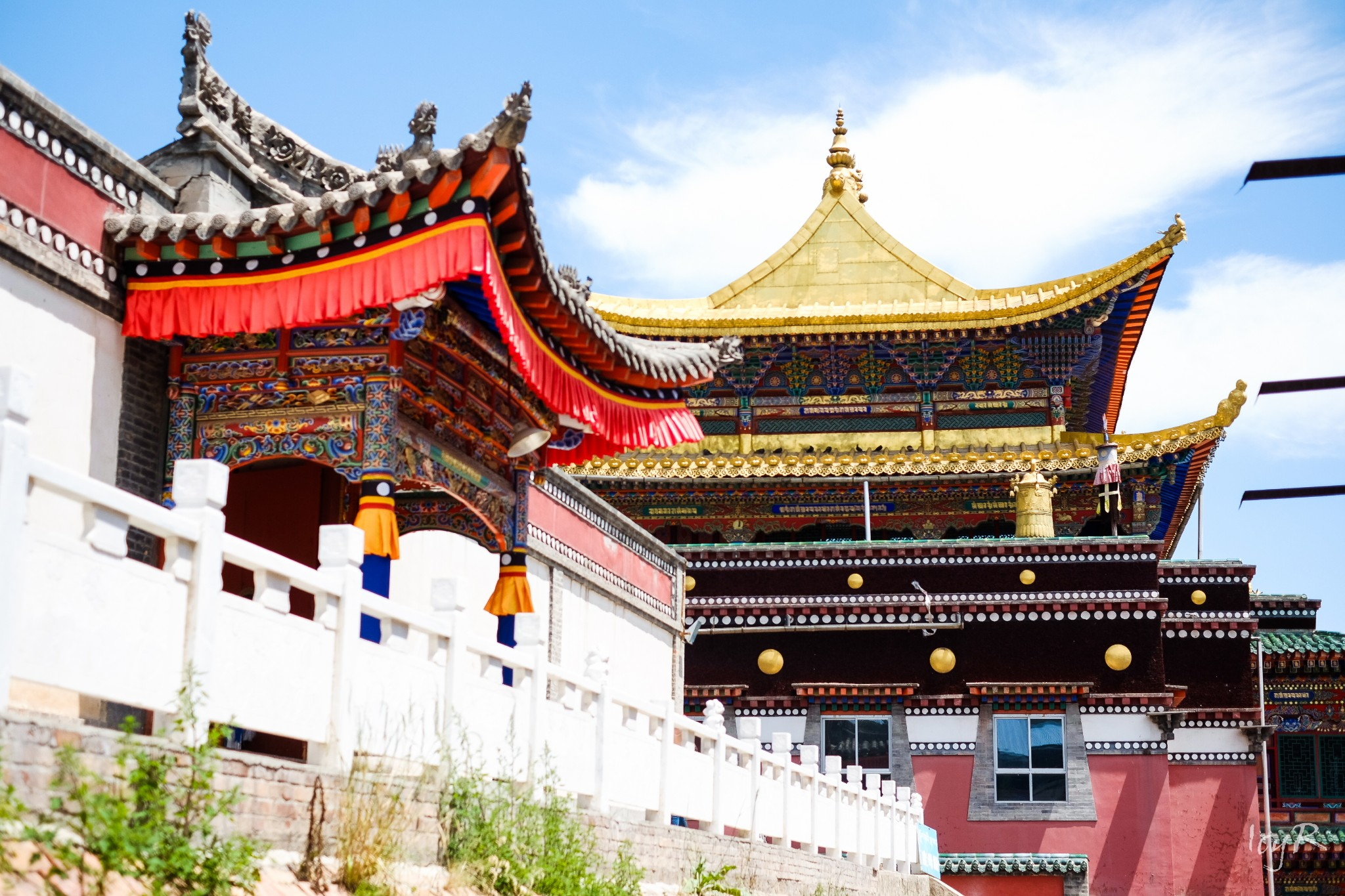 QingHai Taer Temple Tour