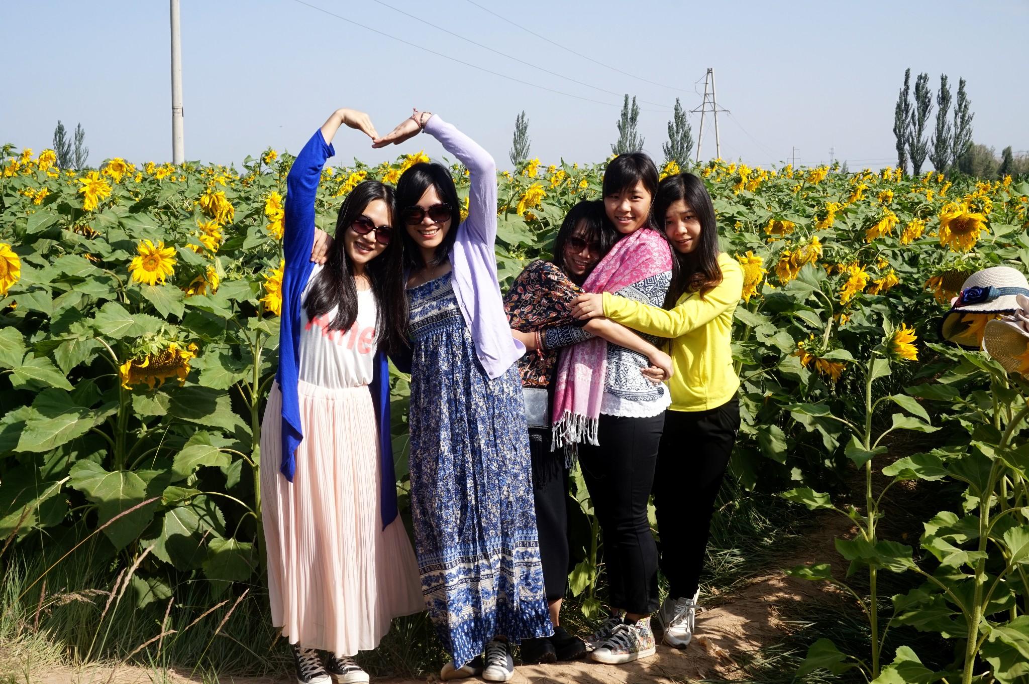 Qinghai  menyuan minle Tour